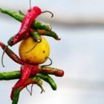 12 Superstitions & Myths Only Indians Believe